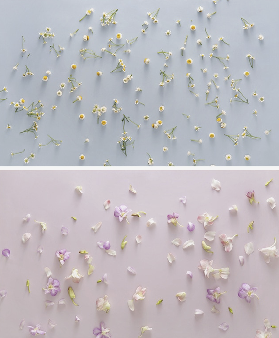 Floral Spring Photography Background Set